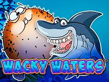 Чокнутые Воды - выиграть биткоины в онлайне